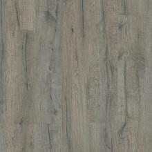 V3307-40037 Дуб королевский серый